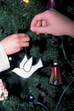 EVE CHR MIS  SK     2114004D  VT   HAND PLACING DOVE ON CHRISTMAS TREESASKATOON                       11/..© CLARENCE W. NORRIS      ALL RIGHTS RESERVEDBULLETINS;CHRISTMAS;DECORATIONS;DOVES;EVENTS;HANDS;PEOPLE;PLAINS;PRAIRIES;RELIGION;SASKATCHEWAN;SASKATOON;SK_;VTLLONE PINE PHOTO              (306) 683-0889