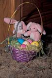 EVE EAS MIS  SK  CWN2202125D  VTLITTLE BUNNIES AND BASKET OF EATER EGGSSASKATOON                       03/31© CLARENCE W. NORRIS      ALL RIGHTS RESERVEDBASKETS;BUNNIES;EASTER;EGGS;EVENTS;PLAINS;PRAIRIES;RABBITS;SASKATCHEWAN;SASKATOON;SK_;SPRING;TOYS;VTLLONE PINE PHOTO              (306) 683-0889