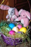 EVE EAS MIS  SK  CWN2202126D  MR # 354  VTTWO LITTLE BUNNIES AND BASKET OF EASTER EGGSSASKATOON               0330         © CLARENCE W. NORRIS         ALL RIGHTS RESERVEDBASKETS;BUNNIES;EASTER;EGGS;EVENTS;PLAINS;PRAIRIES;RABBITS;SASKATCHEWAN;SASKATOON;SK_;SPRING;TOYS;VTLLONE PINE PHOTO                  (306) 683-0889