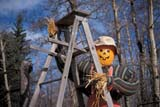 EVE HAL MIS  AB  DSR1000410D STRAW MAN ON LADDERHALLOWE'ENWYE ROAD                         10/..© DUANE S. RADFORD         ALL RIGHTS RESERVEDAB_;ALBERTA;AUTUMN;DECORATIONS;EVENTS;HALLOWEEN;PUMPKINS;RURAL;WYE_ROADLONE PINE PHOTO              (306) 683-0889