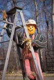 EVE HAL MIS  AB  DSR1000411D  VTSTRAW MAN ON LADDERHALLOWE'ENWYE ROAD                         10/..© DUANE S. RADFORD         ALL RIGHTS RESERVEDAB_;ALBERTA;AUTUMN;BULLETINS;DECORATIONS;EVENTS;HALLOWEEN;PUMPKINS;RURAL;VTL;WYE_ROADLONE PINE PHOTO              (306) 683-0889