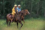 EVE RCM MAR  SK     1906514D  MRCOWBOYS RIDING THROUGH GRASSNWMP MARCH WESTDUCK LAKE                          06/..© CLARENCE W. NORRIS      ALL RIGHTS RESERVEDANIMALS;COWBOYS;DUCK_LAKE;EVENTS;HORSES;MALE;NWMP;NWMP_MARCH_WEST;PEOPLE;PLAINS;PRAIRIES;SASKATCHEWAN;SK_;TRAIL_RIDES;WESTERNLONE PINE PHOTO              (306) 683-0889