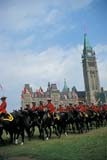 EVE RCM MUS  ON  DSR1000759D  NMR  VTRCMP MUSICAL RIDE, PARLIAMENT HILLOTTAWA                               0723© DUANE S. RADFORD            ALL RIGHTS RESERVEDANIMALS;BUILDINGS;BULLETINS;CANADIAN;CAPITAL;CENTRAL;EVENTS;GROUP;HORSES;ON_;ONTARIO;PARLIAMENT;PARLIAMENT_HILL;PEOPLE;POLICE;RCMP;STRUCTURES;TEAMWORK;TOURISM;UNIFORMS;VTLLONE PINE PHOTO                 (306) 683-0889