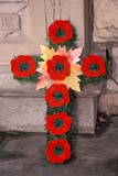 EVE REM DAY  SK     1813503D  VTREMEMBRANCE DAY POPPIES ON CROSSSASKATOON                       11/11© CLARENCE W. NORRIS      ALL RIGHTS RESERVEDBULLETINS;CROSSES;EVENTS;PLAINS;POPPIES;PRAIRIES;REMEMBRANCE_DAY;SASKATCHEWAN;SASKATOON;SK_;VTL;WINTERLONE PINE PHOTO              (306) 683-0889