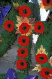 EVE REM DAY  SK  LJN2113942D  VTREMEMBRANCE CROSS MADE FROM POPPIESSASKATOON                       11/11© LAURA NORRIS                 ALL RIGHTS RESERVEDBULLETINS;CROSSES;EVENTS;PLAINS;POPPIES;PRAIRIES;REMEMBRANCE_DAY;SASKATCHEWAN;SASKATOON;SK_;VTL;WINTERLONE PINE PHOTO              (306) 683-0889