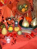 EVE THA MIS  SK  CWN02D4073D  VT  THANKSGIVING DISPLAYSASKATOON                       1013© CLARENCE W. NORRIS      ALL RIGHTS RESERVEDBULLETINS;CRAFTS;EVENTS;PLAINS;PRAIRIES;SASKATCHEWAN;SASKATOON;SK_;THANKSGIVING;VTLLONE PINE PHOTO              (306) 683-0889