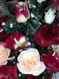 EVE WED MIS  BC  CWN02D2396DDEW ON SILK ROSESSALMON ARM                          08/. .© CLARENCE W. NORRIS           ALL RIGHTS RESERVEDBC_;BRITISH;BRITISH_COLUMBIA;BULLETINS;COLUMBIA;CORDILLERA;DECORATIONS;EVENTS;FLOWERS;ROSES;SALMON_ARM;SILK;VTL;WATER_DROPLETS;WEDDINGSLONE PINE PHOTO                  (306) 683-0889