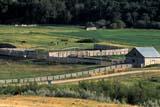 FAR LIV CAT  SK   WS21840D  CATTLE PENSCONGLOMERATE CREEK ROADEASTEND                            07/..© WAYNE SHIELS                ALL RIGHTS RESERVEDANIMALS;CATTLE;EASTEND;FARMING;FENCES;LIVESTOCK;PENS;PLAINS;PRAIRIES;RANCHING;RURAL;SASKATCHEWAN;SCENES;SK_;SUMMERLONE PINE PHOTO              (306) 683-0889
