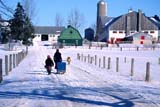 FAR SCE MIS ON     2103317D  NMRMENNONITE CHILDREN WITH SLEIGH GOING HOME INWINTERLINWOOD                                01..© CLARENCE W. NORRIS           ALL RIGHTS RESERVEDANIMALS;CENTRAL;CHILDREN;CULTURE;DOGS;FARMING;FARMYARDS;LINWOOD;MENNONITE;ON_;ONTARIO;PETS;PEOPLE;RURAL;SCENES;SLEIGHS;SNOW;WINTERLONE PINE PHOTO                  (306) 683-0889