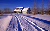 FAR SCE MIS  SK     1618759DTIRE TRACKS IN SNOW ON DRIVELEADING TO FARMSASKATOON                       124© CLARENCE W. NORRIS      ALL RIGHTS RESERVEDFARMING;HOMES;ISOLATION;PLAINS;PRAIRIES;ROADS;RURAL;SASKATCHEWAN;SASKATOON;SCENES;SK_;SNOW;TRACKS;TRANSPORTATION;WINTERLONE PINE PHOTO              (306) 683-0889