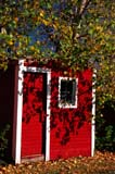 FAR SCE MIS  SK   1709411D  VTAUTUMN SHADOWS ON RED TOOL SHEDPADDOCKWOOD                      0930© CLARENCE W. NORRIS           ALL RIGHTS RESERVEDFARMING;OLD;PADDOCKWOOD;PLAINS;PRAIRIES;RURAL;SASKATCHEWAN;SCENES;SHADOWS;SK_;STRUCTURES;VTL;WINDOWSLONE PINE PHOTO                  (306) 683-0889