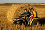 FAR SCE MIS  SK       1307007AD  NMRCHILDREN ON QUAD RUNNER INFRONT OF ROUND BALEBLAINE LAKE                        103© CLARENCE W. NORRIS      ALL RIGHTS RESERVEDAUTUMN;BALES;BLAINE_LAKE;CHILDREN;FARMING;FRIENDS;PEOPLE;PLAINS;PRAIRIES;QUADS;RURAL;SAFETY;SASKATCHEWAN;SCENES;SK_;TRANSPORTATIONLONE PINE PHOTO              (306) 683-0889