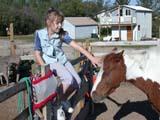 FAR SCE MIS  SK  CWN02D3470D  MR #362 GIRL PETTING  HORSE IN CORRALMEACHAM                               09/. .© CLARENCE W. NORRIS          ALL RIGHTS RESERVEDANIMALS;FARMING;GIRL;HORSES;LIVESTOCK;MEACHAM;MR_;PEOPLE;PETS;PLAINS;PRAIRIES;RURAL;SASKATCHEWAN;SCENES;SK_LONE PINE PHOTO                  (306) 683-0889
