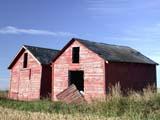 FAR SCE MIS  SK  CWN02D3732DRED WOODEN GRAIN BINS, HANGING DOORSPRINGSIDE                         0928© CLARENCE W. NORRIS      ALL RIGHTS RESERVEDBINS;DAMAGED;DOORS;FARMING;GRANARIES;OLD;PLAINS;PRAIRIES;RURAL;SASKATCHEWAN;SK_;SPRINGSIDE;STRUCTURES;WEATHEREDLONE PINE PHOTO              (306) 683-0889