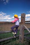 FAR PEO MIS  SK     1903621D  MR  VT    GIRL CLIMBING FENCE IN FIELD, CHAPLIN'S B&B                   FLORAL                              05..© CLARENCE W. NORRIS      ALL RIGHTS RESERVEDBULLETINS;CHILDREN;FARMING;FLORAL;GIRL;HATS;MR_;PEOPLE;PLAINS;PRAIRIES;RURAL;SASKATCHEWAN;SCENES;SK_;VTLLONE PINE PHOTO              (306) 683-0889