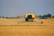NEW HOLLAND COMBINE IN FIELD OF GRAIN, TRUCK BEHIND, CANDO