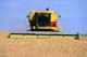 NEW HOLLAND COMBINE IN FIELD OF GRAIN, CANDO