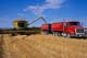 NEW HOLLAND COMBINE LOADING GRAIN INTO TRUCK, CANDO