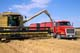 NEW HOLLAND COMBINE LOADING GRAIN INTO TRUCK