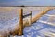 WINTER FENCELINE AND STUBBLE STRIPS TO CATCH SNOW, DUCK LAKE