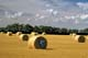 LEGS STICKING OUT OF ROUND BALE, DELISLE