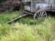 OLD WAGON IN PRAIRIE GRASS, ELSTOW