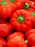 GAR PRO PEP  SK   CWN02T0099D  VT RED PEPPERSSASKATOON FARMER'S MARKETSASKATOON                            06..© CLARENCE W. NORRIS           ALL RIGHTS RESERVEDCROPS;FARMERS_MARKET;FARMING;FOOD;GARDEN;PEPPERS;PLAINS;PRAIRIES;PRODUCE;RED_PEPPERS;SASKATCHEWAN;SASKATOON;SK_;SUMMER;VTLLONE PINE PHOTO                  (306) 683-0889