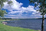 GEO LAK MIS  AB  KJM1913010DWINDY LAKESHOREDRIEDMEAT LAKE                  06..© KEVIN MORRIS                  ALL RIGHTS RESERVEDAB_;ALBERTA;BEACH;DRIEDMEAT_LAKE;GEOGRAPHY;LAKES;PLAINS;PRAIRIES;SCENES;SKY;SUMMER WINDLONE PINE PHOTO               (306) 683-0889