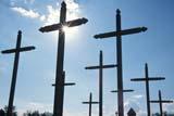HIS NAT BAT  SK     2006631DCROSSES AND SUNSTARBATOCHE NAT HIS. SITE       08/03© CLARENCE W. NORRIS      ALL RIGHTS RESERVEDBATOCHE;BATOCHE_NHS;CEMETERIES;CROSSES;GRAVEYARDS;HISTORIC;METIS;PIONEERS;PLAINS;PRAIRIES;RELIGION;SASKATCHEWAN;SK_;SUMMER;SUN;SUNSTARS;TOURISMLONE PINE PHOTO              (306) 683-0889