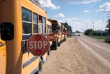 IND EDU MIS  SK  WS20718DSTOP SIGNS ON SCHOOL BUSES WAITING FOR STUDENTSBLAINE LAKE                        05..© WAYNE SHIELS                ALL RIGHTS RESERVEDAUTOS;BLAINE_LAKE;BUSSES;EDUCATION;INDUSTRY;PLAINS;PRAIRIES;ROADS;RURAL;SAFETY;SASKATCHEWAN;SCHOOLS;SIGNS;SK_;STOP;TRANSPORTATIONLONE PINE PHOTO              (306) 683-0889