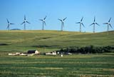 IND ENE MIS  AB     2105924DWIND TURBINESPINCHER CREEK                    07..© CLARENCE W. NORRIS      ALL RIGHTS RESERVEDAB_;ALBERTA;ENERGY;FARMING;FOOTHILLS;INDUSTRY;PINCHER_CREEK;RURAL;SUMMER;TURBINES;WIND;WIND_FARMS;WIND_TURBINESLONE PINE PHOTO              (306) 683-0889