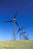 IND ENE MIS  AB  REH1000597D  VTWIND ELECTRICITY GENERATORSCOWLEY                             08..© ROYCE HOPKINS              ALL RIGHTS RESERVEDAB_;ALBERTA;CORDILLERA;COWLEY;ENERGY;FOOTHILLS;INDUSTRY;SUMMER;TURBINES;VTL;WIND;WIND_TURBINESLONE PINE PHOTO              (306) 683-0889