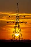 IND ENE MIS  SK   WS20661D  VTHYDRO-ELECTRIC TOWERS AT SUNSETCODETTE                            ..                   © WAYNE SHIELS                ALL RIGHTS RESERVEDCODETTE;ENERGY;HYDRO_ELECTRIC;INDUSTRY;PLAINS;POWER_LINES;PRAIRIES;SASKATCHEWAN;SK_;SKY;STRUCTURES;SUMMER;SUN;SUNSETS;TRANSMISSION_TOWERS;VTLLONE PINE PHOTO              (306) 683-0889