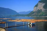 IND FOR MIS  BC  CWN2207304D       LOG BOOM AND FLOATING SHED, SHUSWAP LAKEFEDERATED CO-OP FOREST PRODUCTS CANOE                               08/..   © CLARENCE W. NORRIS     ALL RIGHTS RESERVEDBC_;BRITISH;BRITISH_COLUMBIA;CANOES;COLUMBIA;CORDILLERA;FORESTRY;INDUSTRY;INTERIOR;LAKES;LOG_BOOMS;SHUSWAP_LAKE;SUMMER;WATERLONE PINE PHOTO                  (306) 683-0889