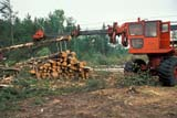 IND FOR MIS  SK     1910915DMACHINE DE-LIMBING TREESDORINTOSH                        08                   © CLARENCE W. NORRIS      ALL RIGHTS RESERVEDDORINSTOSH;EQUIPMENT;FORESTRY;HARVEST;INDUSTRY;LOGGING;PARKLAND;SASKATCHEWAN;SK_;TREES;WOODLONE PINE PHOTO              (306) 683-0889