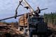 MAN OPERATING CRANE ON LOGGING TRUCK, QUEEN CHARLOTTE ISLANDS
