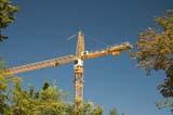 OCC CON COM  SK  WDS05B4889DX  CONSTRUCTION CRANE FRAMED BY TREESSASKATOON                     ....© WAYNE SHIELS               ALL RIGHTS RESERVEDCOMMERCIAL;CONSTRUCTION;CRANES;EQUIPMENT;INDUSTRY;PLAINS;PRAIRIES;SASKATCHEWAN;SASKATOON;SK_;SUMMER;URBANLONE PINE PHOTO              (306) 683-0889