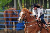 OCC ROD MIS  SK  WDS09B6746DXPOLE RACINGSASKATCHEWAN PROVINCIAL HIGH SCHOOL RODEO CHAMPIONSHIPOK CORRALMARTENSVILLE                        06© WAYNE SHIELS                    ALL RIGHTS RESERVEDACTIVITIES;ANIMALS;COWGIRLS;FEMALE;HATS;HORSES;MARTENSVILLE;OCCUPATIONS;OK_CORRAL;OUTDOORS;PEOPLE;POLE;PLAINS;PRAIRIES;RACING;RIDING;RODEOS;SASKATCHEWAN;SASKATCHEWAN_PROVINCIAL_HIGH_SCHOOL_RODEO_CHAMPIONSHIP;SK_;SUMMER;TEENS;WESTERNLONE PINE PHOTO              (306) 683-0889