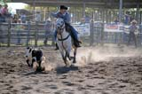 OCC ROD MIS  SK  WDS09G2372DXCALF ROPING, HIGH SCHOOL RODEOOK CORRALMARTENSVILLE                    09© WAYNE SHIELS                ALL RIGHTS RESERVEDACTIVITIES;ANIMALS;CALF_ROPING;CALVES;CORRALS;COWBOYS;HATS;HORSES;MALE;MARTENSVILLE;OCCUPATIONS;OK_CORRAL;OUTDOORS;PEOPLE;PLAINS;PRAIRIES;RODEOS;SAND;SASKATCHEWAN;SK_;SUMMER;TEENSLONE PINE PHOTO              (306) 683-0889