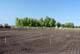 CONSTRUCTION OF FOOTBALL FIELD, WARMAN