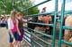 TEENS ADMIRING HORSE AT RODEO, WARMAN