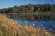 LILY POND IN AUTUMN, WHITESHELL PROVINCIAL PARK