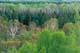 SPRING FOREST, SANDILANDS PROVINCIAL FOREST
