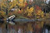 SEA AUT SCE  MB  BAE1000065DBOAT ON SHORE IN AUTUMN SETTING LAKEWABOWDEN                       09..© BRUCE A. ECKER               ALL RIGHTS RESERVEDAUTUMN;BOATS;COTTAGE;LAKES;MANITOBA;MB_;PARKLAND;PLAINS;PRAIRIES;SCENES;SETTING_LAKE;SHORELINE;WABOWDEN;WATERLONE PINE PHOTO              (306) 683-0889