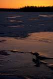 SEA SPR SCE  MB  BAE1000032D   VTDAWN LIGHT ON ICEWEKUSKO LAKESNOW LAKE                       05/..© BRUCE A. ECKER              ALL RIGHTS RESERVEDBOREAL;BREAKUP;ICE;LAKES;MANITOBA;MB_;SCENES;SHIELD;SNOW_LAKE;SPRING;SUNRISES;VTL;WEKUSKO_LAKELONE PINE PHOTO              (306) 683-0889