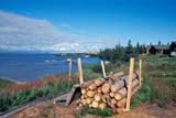 LOC COL MIS  NT  KJM0013407DPILE OF FIREWOOD AND SHORELINECOLVILLE LAKE                      08                   © KEVIN MORRIS                   ALL RIGHTS RESERVEDARCTIC;COLVILLE_LAKE;FIREWOOD;LOGS;NORTHWEST;NORTHWEST_TERRITORIES;NT_;NWT;OUTDOORS;SCENES;SUMMER;TERRITORIES;WOODLONE PINE PHOTO              (306) 683-0889