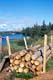 STACK OF FIREWOOD IN SUMMER, COLVILLE LAKE