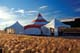 COLOURED TENTS AND FOXTAIL GRASS, INUVIK