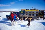 LOC INU MIS  NT  KJM0104109DTRUCK WITH SLED DOG CAGESMUSKRAT JAMBOREEINUVIK                                 04                  © KEVIN MORRIS                   ALL RIGHTS RESERVEDACTIVITIES;ANIMALS;ARCTIC;AUTOS;CAGES;DOG_SLEDDING;DOGS;EQUIPMENT;FESTIVALS;INUVIK;MUSKRAT_JAMBOREE;NORTHWEST;NORTHWEST_TERRITORIES;NT_;NWT;OUTDOORS;PEOPLE;SNOW;SPRING;TERRITORIES;TRANSPORTATION;TRUCKSLONE PINE PHOTO              (306) 683-0889