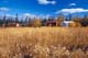 LOG CABINS IN LONG GRASS IN AUTUMN, T'LOONDIH HEALING SOCIETY, FORT MCPHERSON